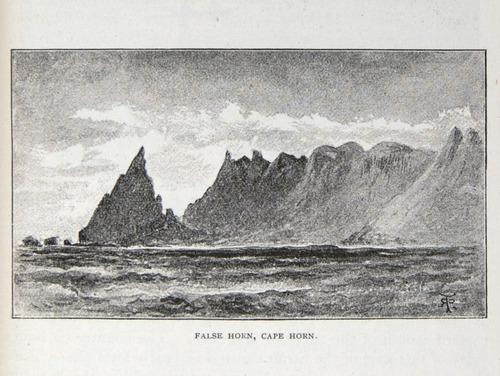 Image of Darwin-F64-1890-zzzz-det-243