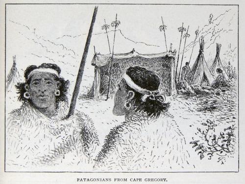 Image of Darwin-F64-1890-zzzz-det-245