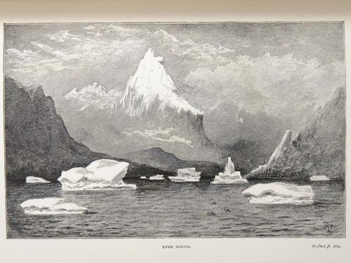 Image of Darwin-F64-1890-zzzz-det-260-f6