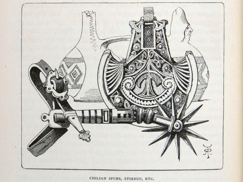 Image of Darwin-F64-1890-zzzz-det-290