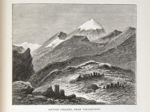 Image of Darwin-F64-1890-zzzz-det-311