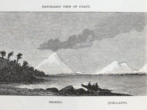 Image of Darwin-F64-1890-zzzz-det-312