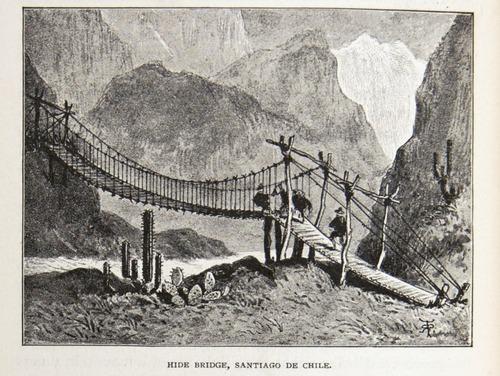 Image of Darwin-F64-1890-zzzz-det-334