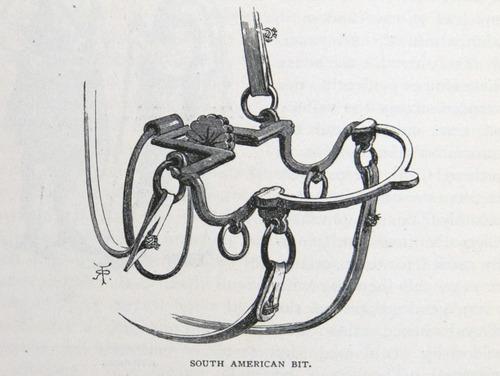Image of Darwin-F64-1890-zzzz-det-338