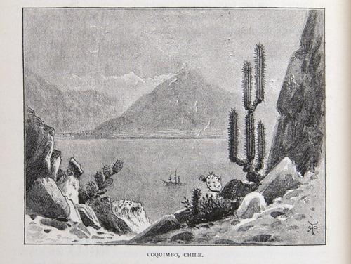 Image of Darwin-F64-1890-zzzz-det-366