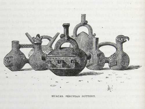 Image of Darwin-F64-1890-zzzz-det-396