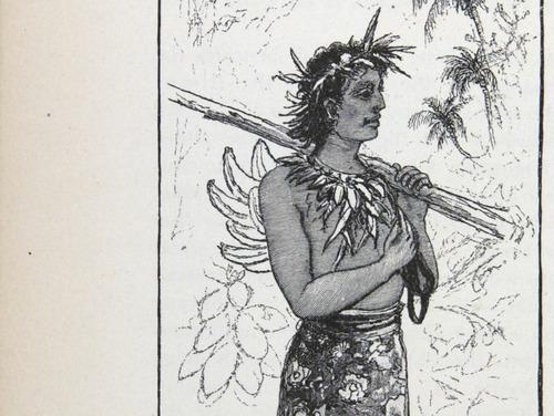 Image of Darwin-F64-1890-zzzz-det-438