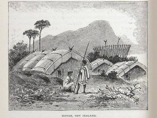 Image of Darwin-F64-1890-zzzz-det-458