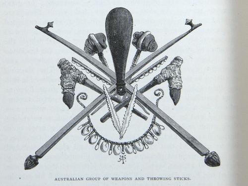 Image of Darwin-F64-1890-zzzz-det-480
