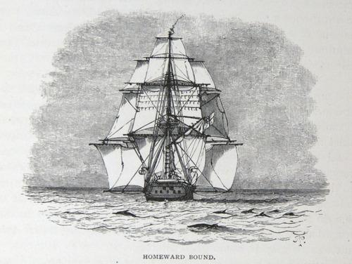 Image of Darwin-F64-1890-zzzz-det-531