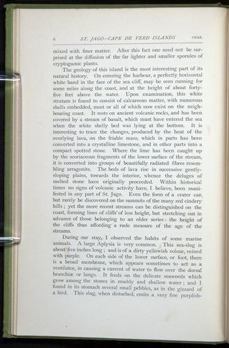 Image of Darwin-F64-1890-006