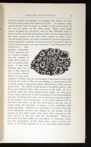 Image of Darwin-F64-1890-009
