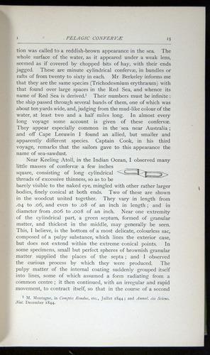 Image of Darwin-F64-1890-015