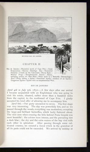 Image of Darwin-F64-1890-019