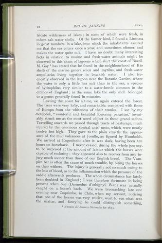 Image of Darwin-F64-1890-022