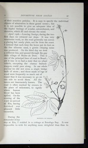 Image of Darwin-F64-1890-027