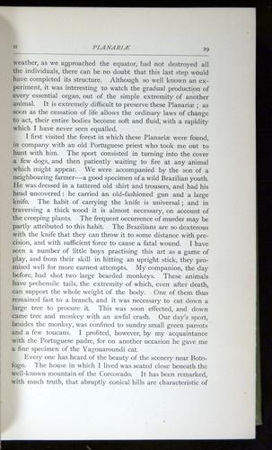 Image of Darwin-F64-1890-029