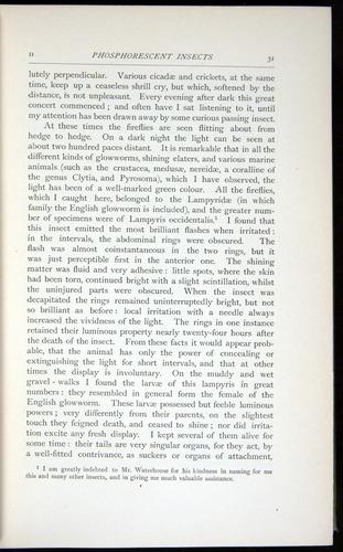 Image of Darwin-F64-1890-031