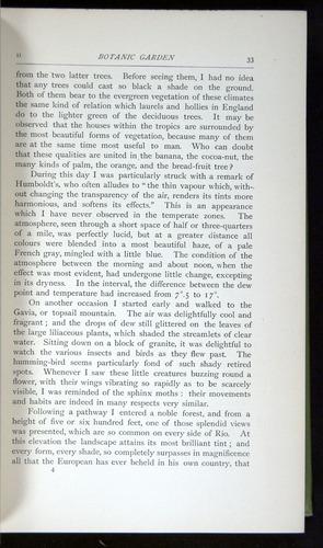 Image of Darwin-F64-1890-033