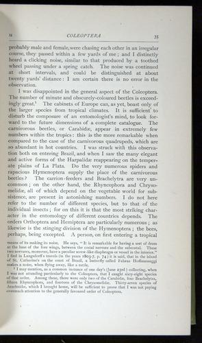 Image of Darwin-F64-1890-035