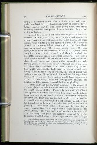 Image of Darwin-F64-1890-036