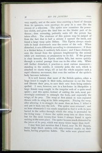 Image of Darwin-F64-1890-038