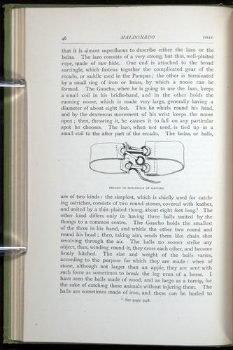 Image of Darwin-F64-1890-046