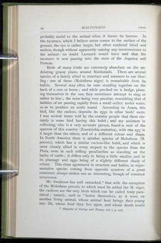 Image of Darwin-F64-1890-054