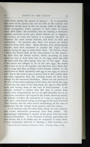 Image of Darwin-F64-1890-055