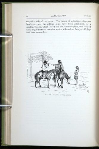 Image of Darwin-F64-1890-064