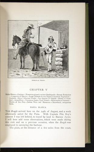 Image of Darwin-F64-1890-085