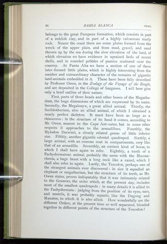 Image of Darwin-F64-1890-086