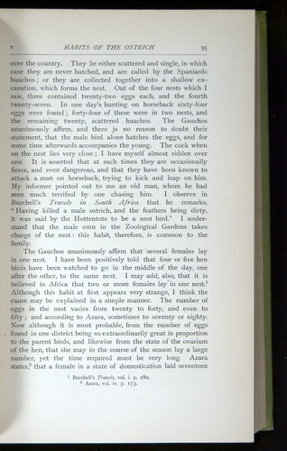 Image of Darwin-F64-1890-095