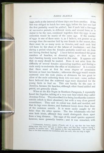 Image of Darwin-F64-1890-096