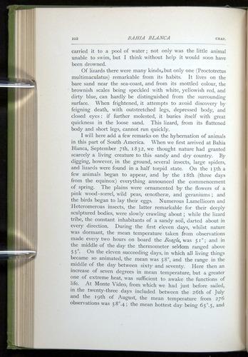 Image of Darwin-F64-1890-102