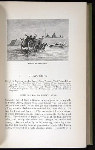 Image of Darwin-F64-1890-111