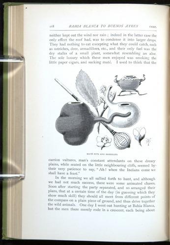 Image of Darwin-F64-1890-118