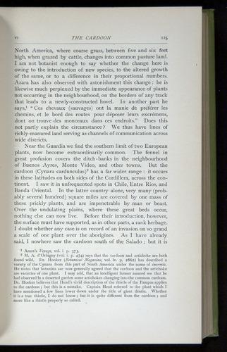 Image of Darwin-F64-1890-125