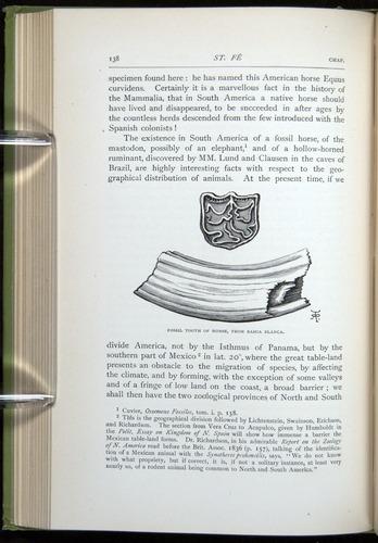 Image of Darwin-F64-1890-138