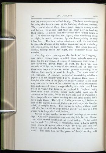 Image of Darwin-F64-1890-144