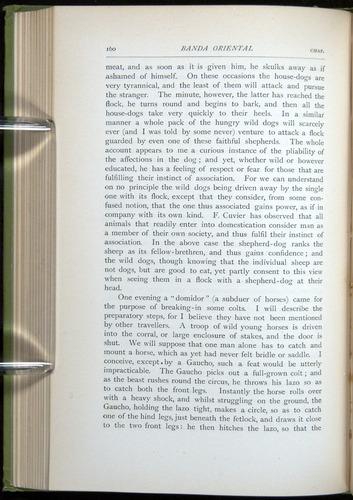 Image of Darwin-F64-1890-160