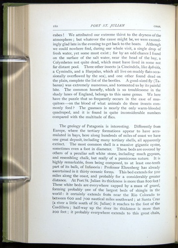 Image of Darwin-F64-1890-180