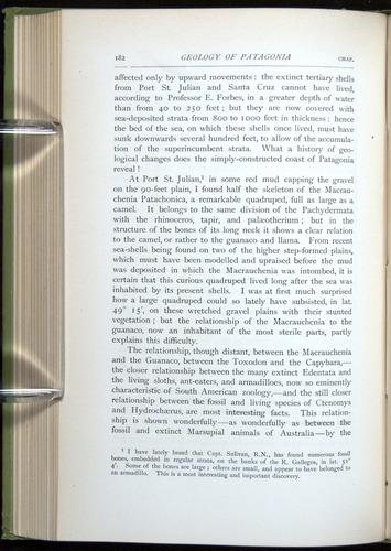 Image of Darwin-F64-1890-182