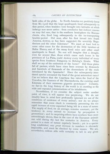 Image of Darwin-F64-1890-184