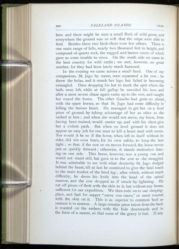 Image of Darwin-F64-1890-200