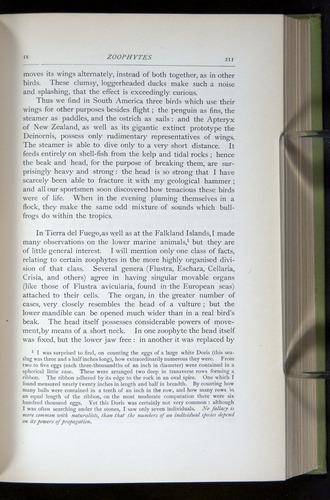 Image of Darwin-F64-1890-211