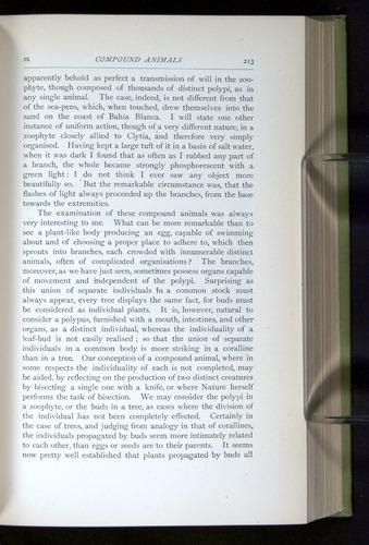 Image of Darwin-F64-1890-213