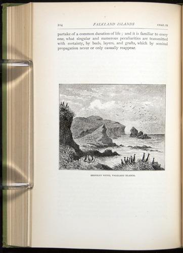 Image of Darwin-F64-1890-214