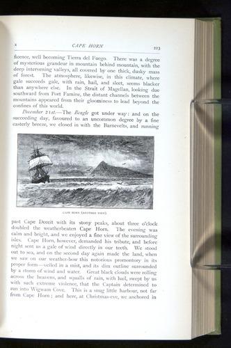 Image of Darwin-F64-1890-223
