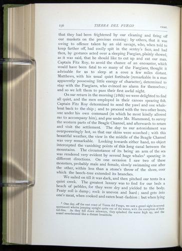 Image of Darwin-F64-1890-236